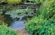 Очистка водоема в саду