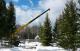 Посадка крупномерных деревьев в зимний период